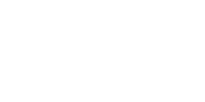 Dynamic Management Group (DMG Inc.) Recruitment Specialists - White Logo